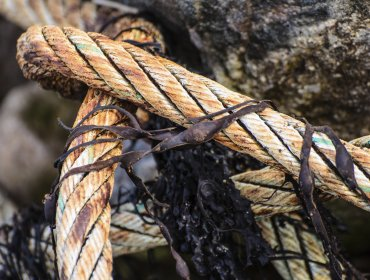câbles - amiante dépollution